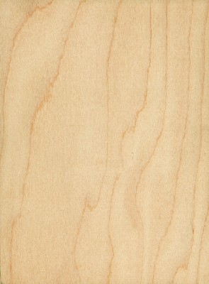 Holz Birke holz possling preisliste furnier und sperrholzplatten
